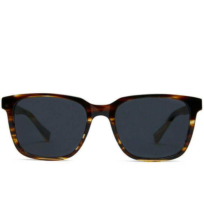 Baxter Blue Sunglasses - Carter / Classic Chestnut