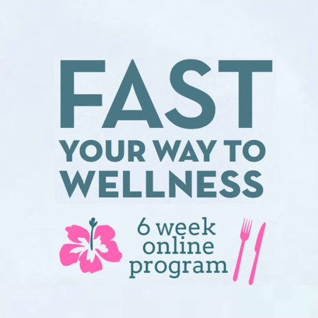 Lee Holmes Fast Your Way to Wellness Program