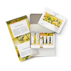 Dr. Hauschka Face Care Kit