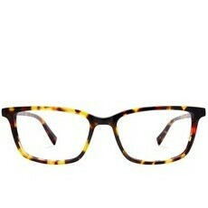 Blue Light Glasses Wells Classic Tortoise