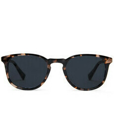 Baxter Blue Sunglasses - Lane / Quartz Tortoise