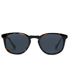 Baxter Blue Sunglasses - Lola / Maple Tortoise